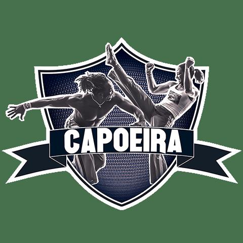 Cours de Capoeira à Paris 10