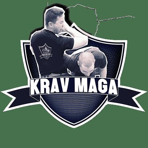 Cours de Krav Maga à Paris 10