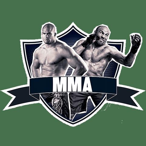 Cours de MMA à Paris 10